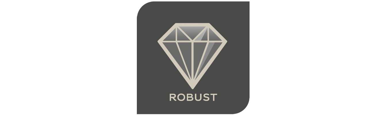 Logo Robust